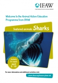 Animals and Us - Sharks