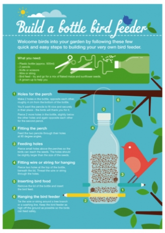Bird Feeder Guide