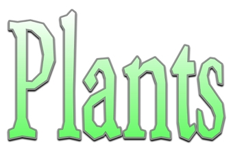 Plants Display Keywords